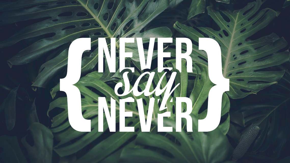 Never say never #resolutions for #2017 #FreeToEdit