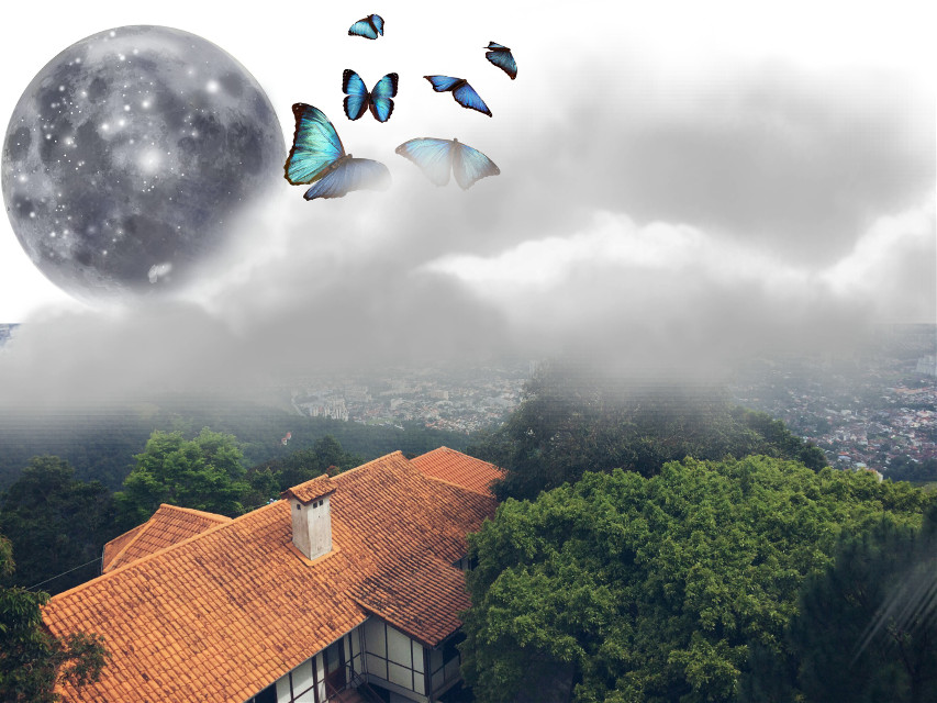 #FreeToEdit  #house #trees #nature #cloud #moon #butterlfy