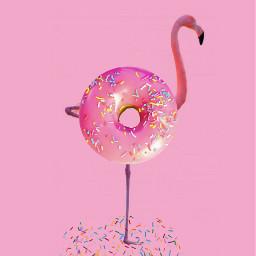 freetoedit flamingo pink flamingoremix dailyremixmechallenge