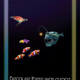 freetoedit humor fish