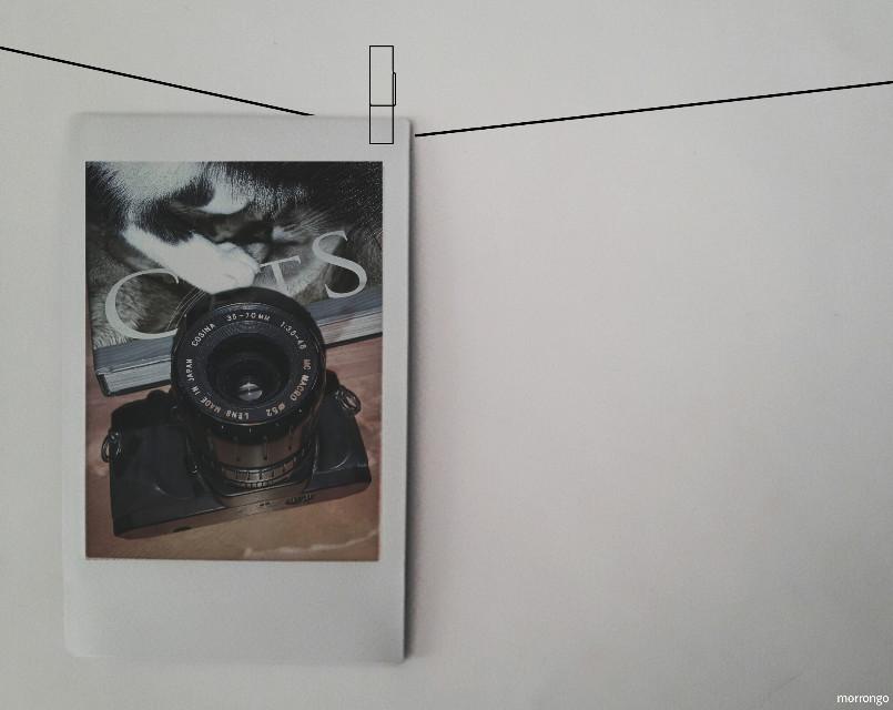 #FreeToEdit  #myedit  #instantpic  #myart  #creative  #artistic  #photography