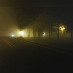 fog foggynight surreal