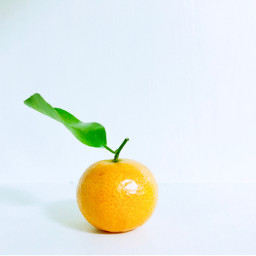 freetoedit fruit orangeandgreen