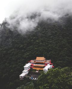 taiwan tample forest green freetoedit