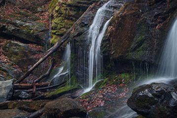 colorful nature photography naturephotography natural