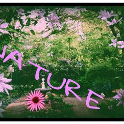 nature freetoedit