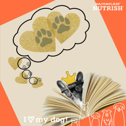 freetoedit daydreaming dog nutrish nutrishforpets