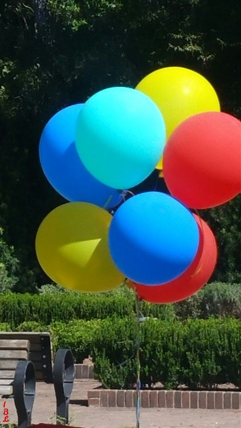 freetoedit dpccolors balloons sunny colorful