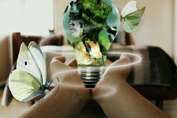 freetoedit remixed butterfly me lightbulb