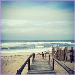 surf freetoedit
