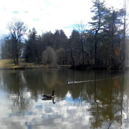 reflection vignette