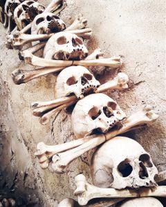 freetoedit skull prague ketnahora chapelofskeletons