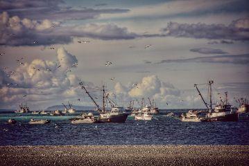 sea ocean twilighteffect scenic scape