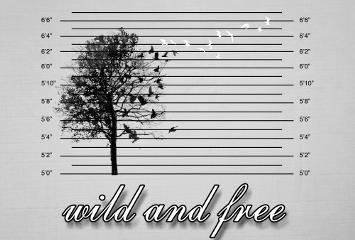 freetoedit blackandwhite tree quotes qoutes